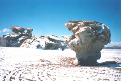 Wind sculpted rocks