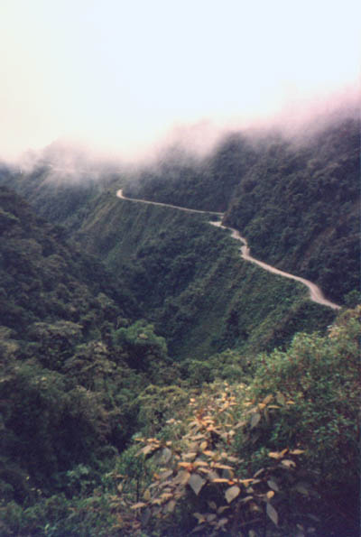 Down to the Yungas